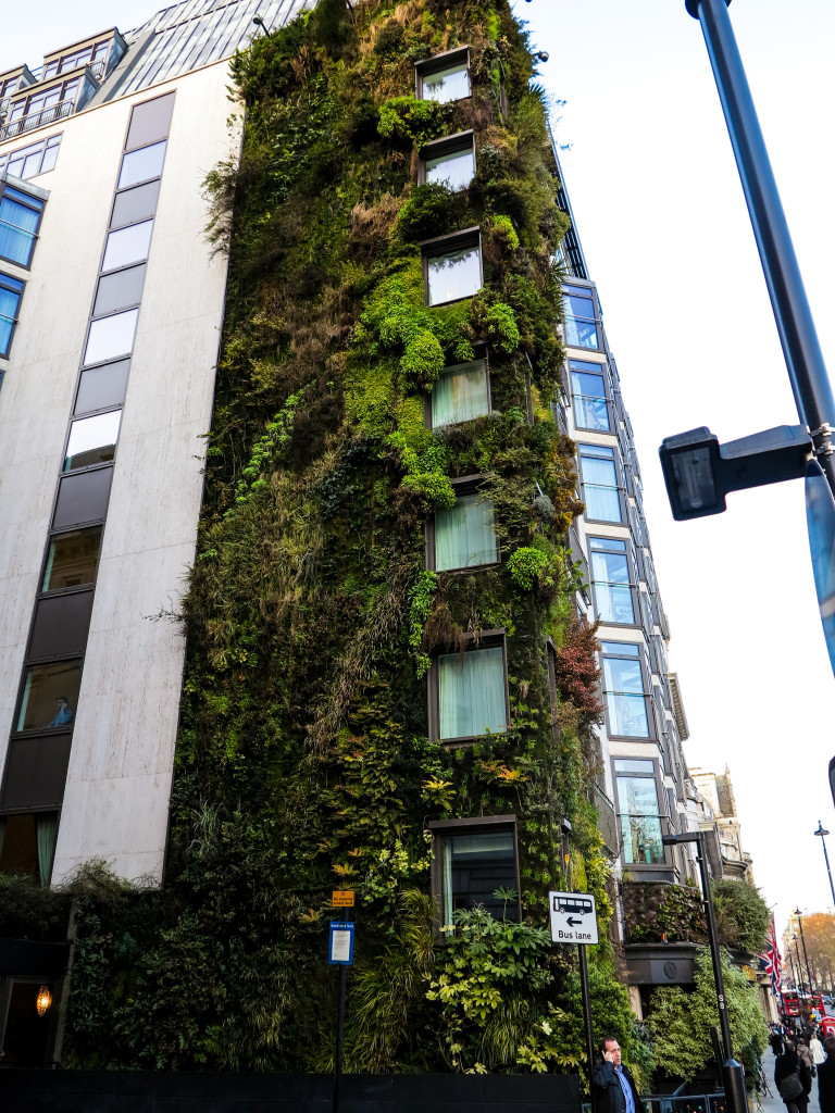 Athenaeum Hotel, London