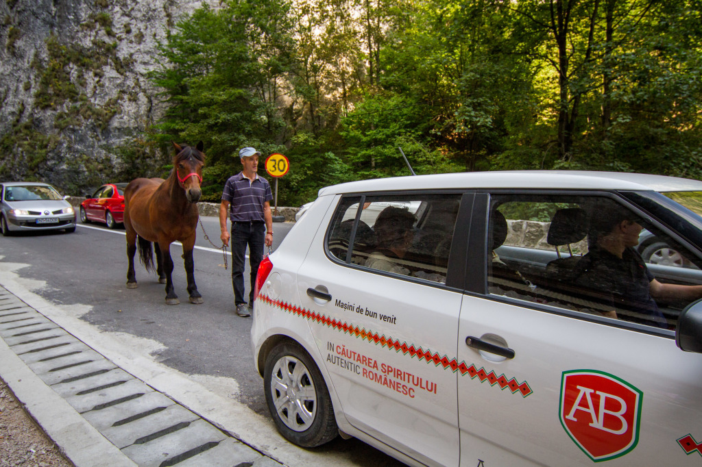 Autoboca Rental car and Horse Traffic in Bicaz Canyon