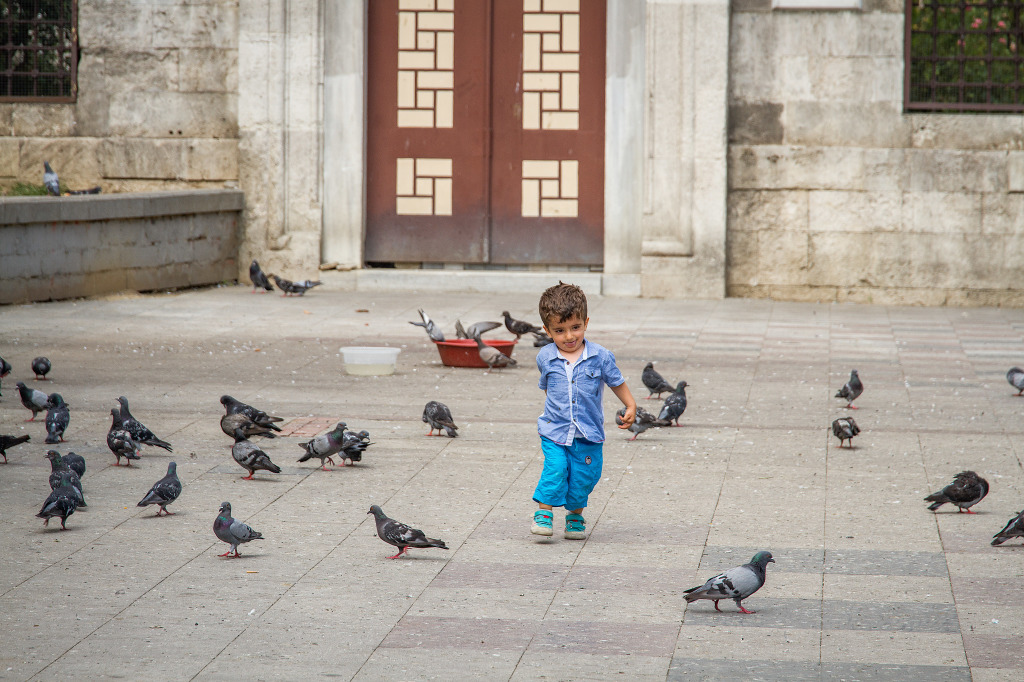 Turkish Child Chase birds