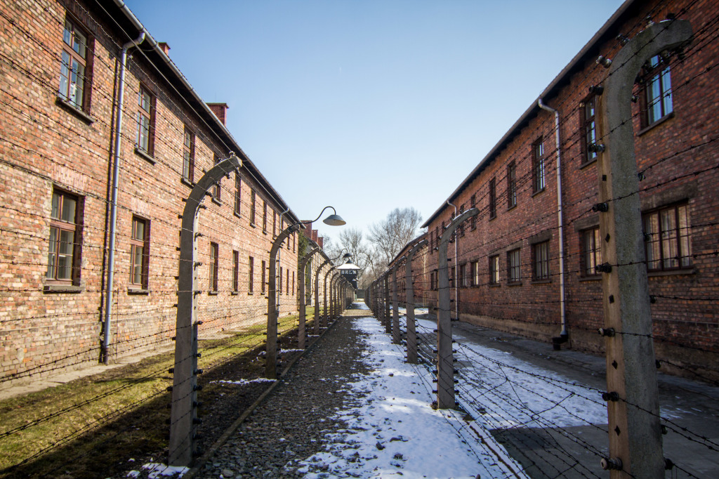 Auschwitz Barracks and Wire