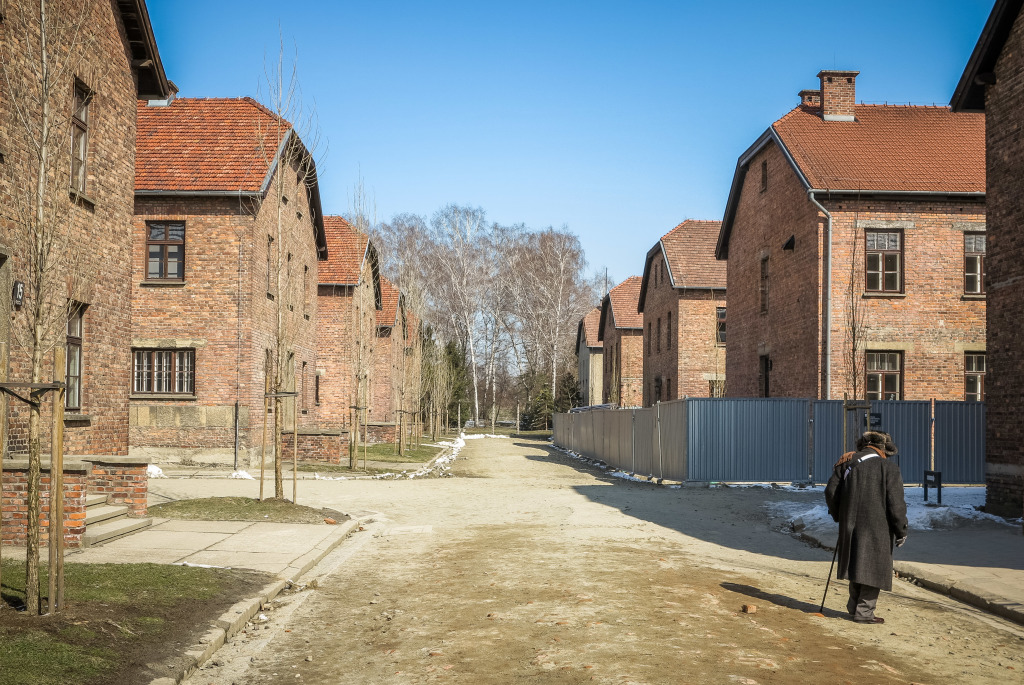Survivor Barracks at Auschwitz