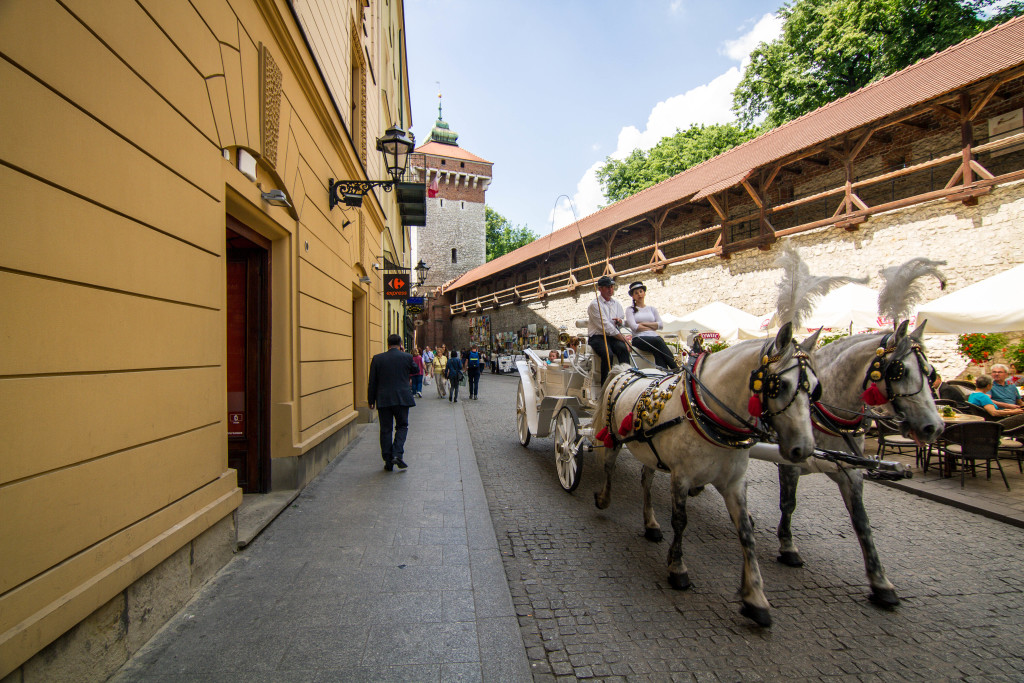 Horsecart in Krakow Old Town