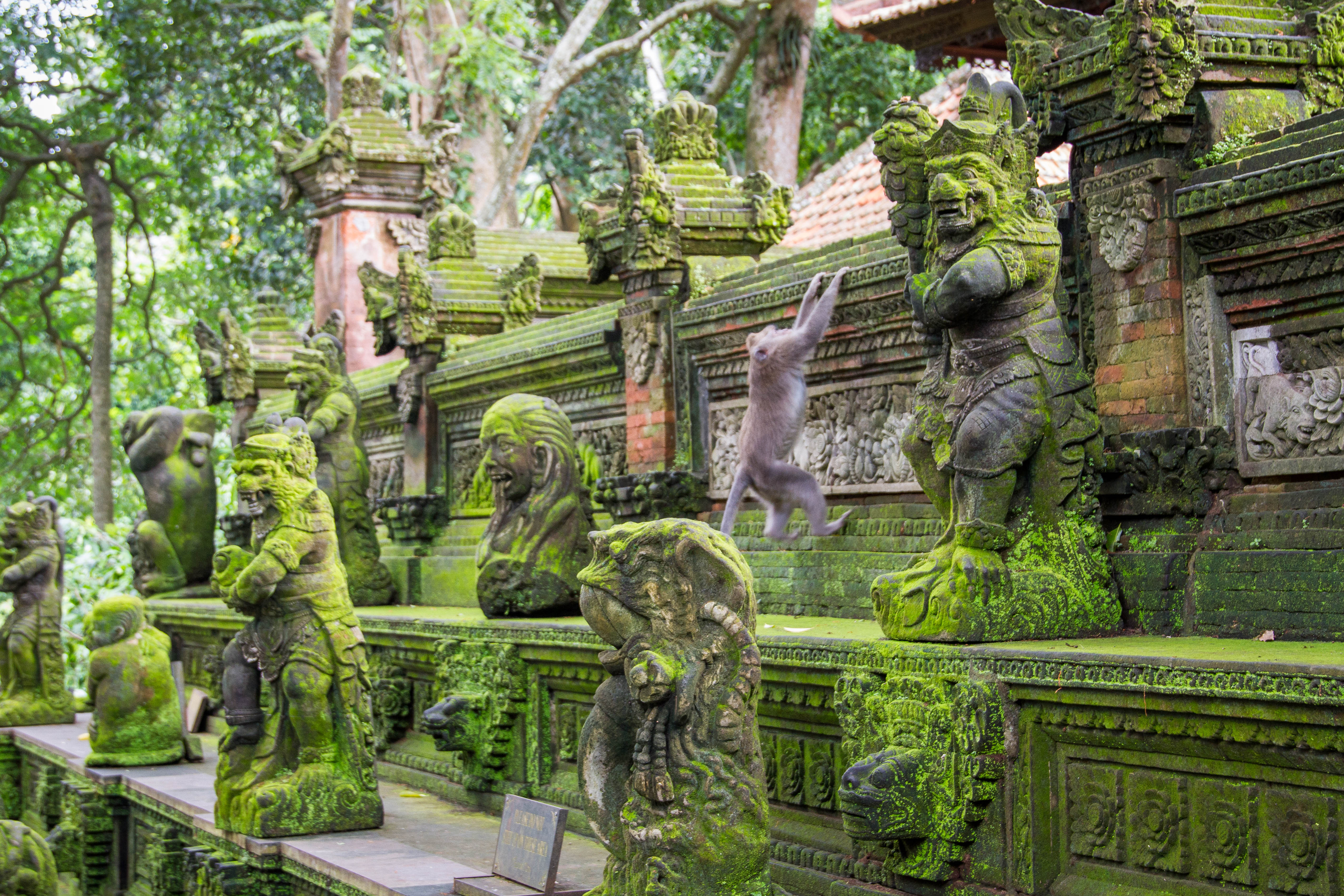 ubud guys Remote work in ubud, bali with unsettled from $550 / week including private  rooms and coworking space.