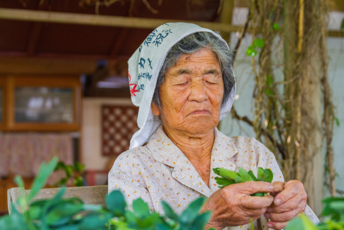 93 Year Old Okinawan Woman picks greens