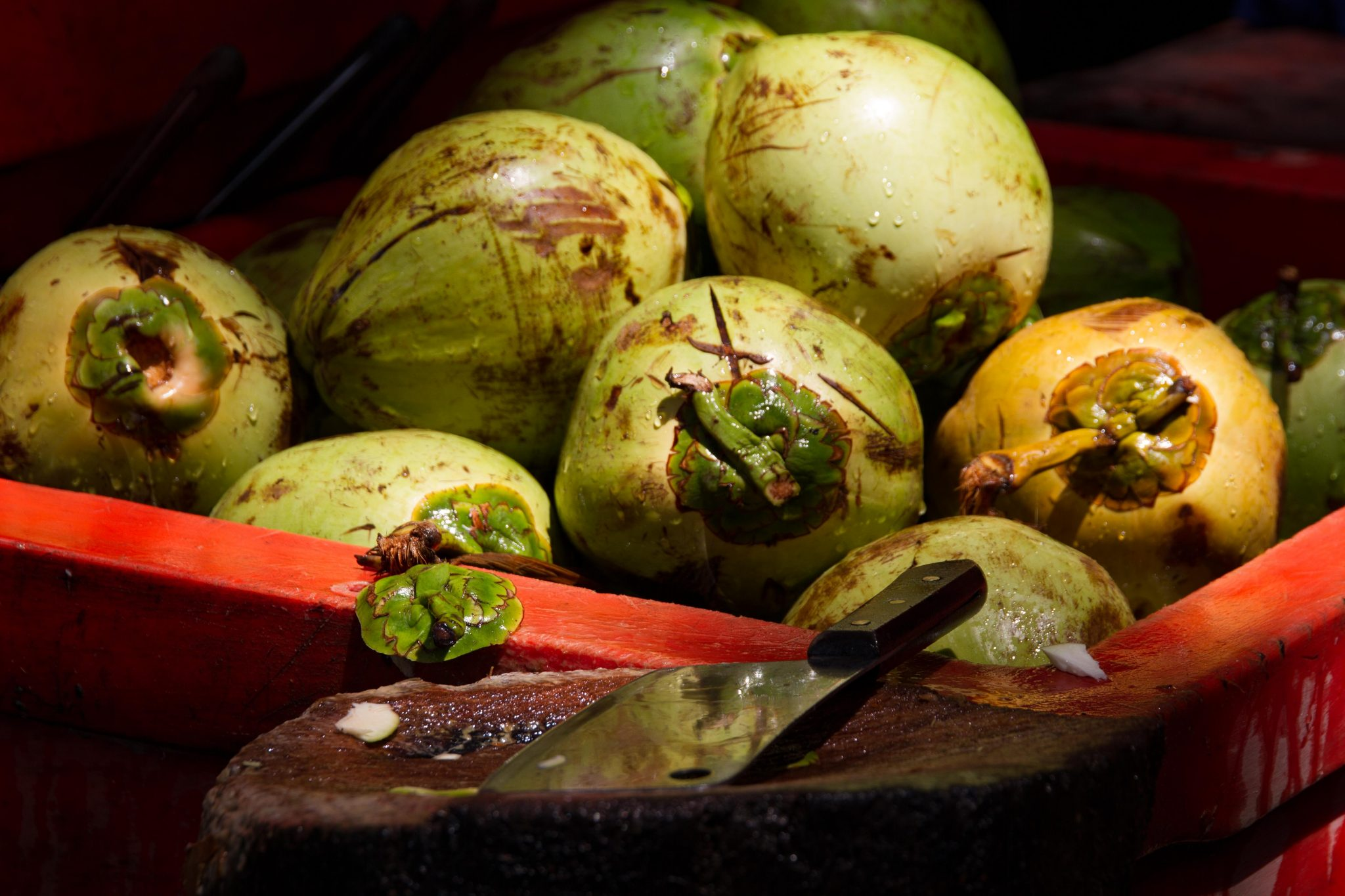 Wet Coconuts and Knife at Angkor Wat